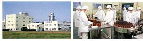原料から製造まで一貫した品質管理